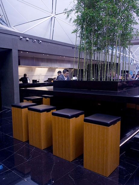 hkg_lounge_the_wing.28